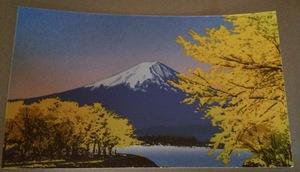 色が変わる写真使用した名刺